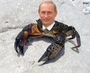 Антон Бенц, 24 октября , Сыктывкар, id149560477